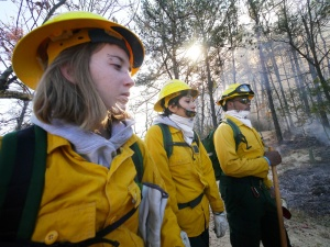 Volunteers man fire lines at Pilot Mountain State Park.