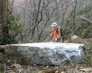 Part of a 2,000-ton rock slab that fell and shattered above Hickory Nut Falls Trail.