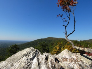Wolf Rock is one of many spectacular overlooks at Hanging Rock State Park.