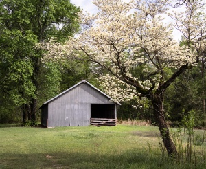 Scenery at Long Valley Farm recalls its agricultural history.
