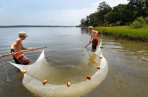 Day camps on Jones Island give youngsters a chance to get up close with coastal ecology.