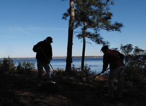 Volunteers spent many hours leaning brush and trash from the island.