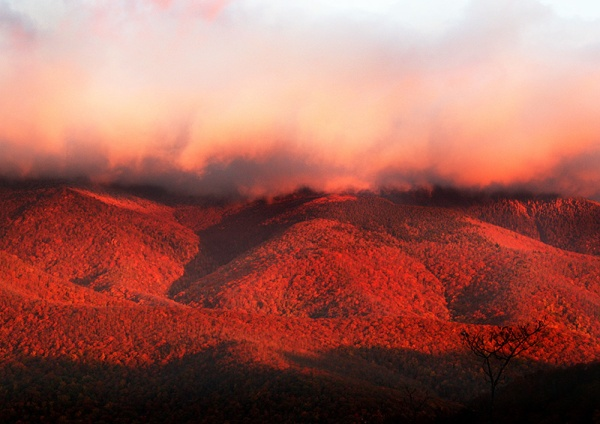 Fall color begins at the highest elevations. This photo of Mount Mitchell's lower slopes and the Black Mountain Range was taken in 2012