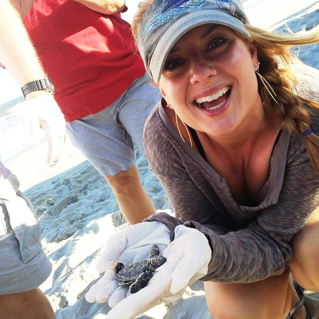One of 107 hatchling green sea turtles dug from a nest Saturday.