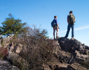 With more than 20 miles of trails, Crowders Mountain is a hiking destination.
