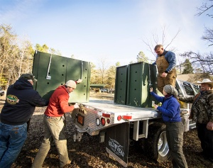 Deer in individual crates are loaded for the four-hour journey to the Cherokee Qualla Boundary reservation.