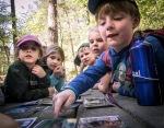 Junior Rangers study animal sign with photos.