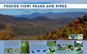 Exhibit names peaks in view and describes the Dutchman's pipeline.