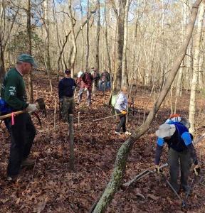 Volunteers, directed by seasonal employee Joe Franks begin clearing a biking trail corridor.