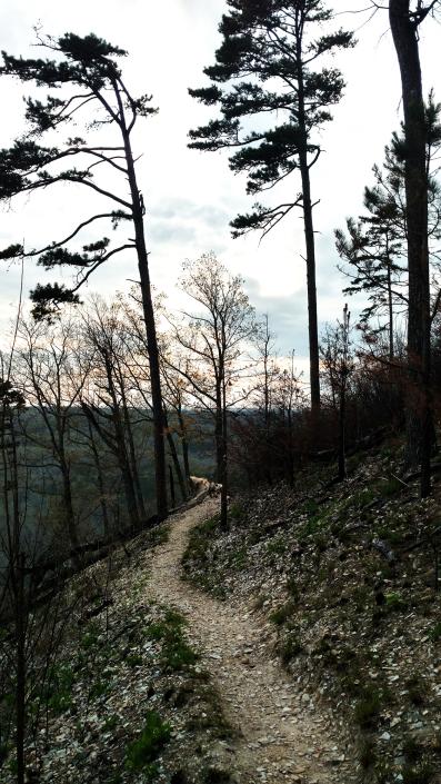 Morrow Mountain, Mountain Loop Trail