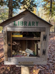 LANO lil library